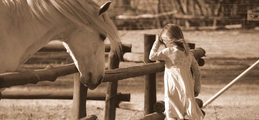Horse & little girl
